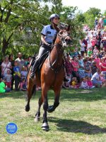 Den záchranářů Kolín 2018 - ukázky výcviku policejních koní